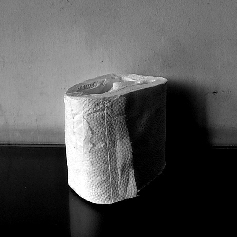 Tisu gulung atau tisu toilet?