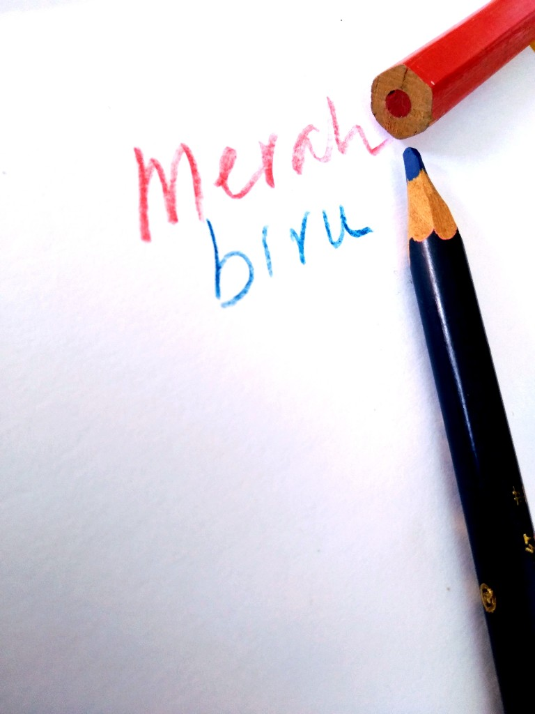 Pensil dua warna, merah dan biru, diserut dengan cutter