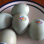 Telur asin berstiker