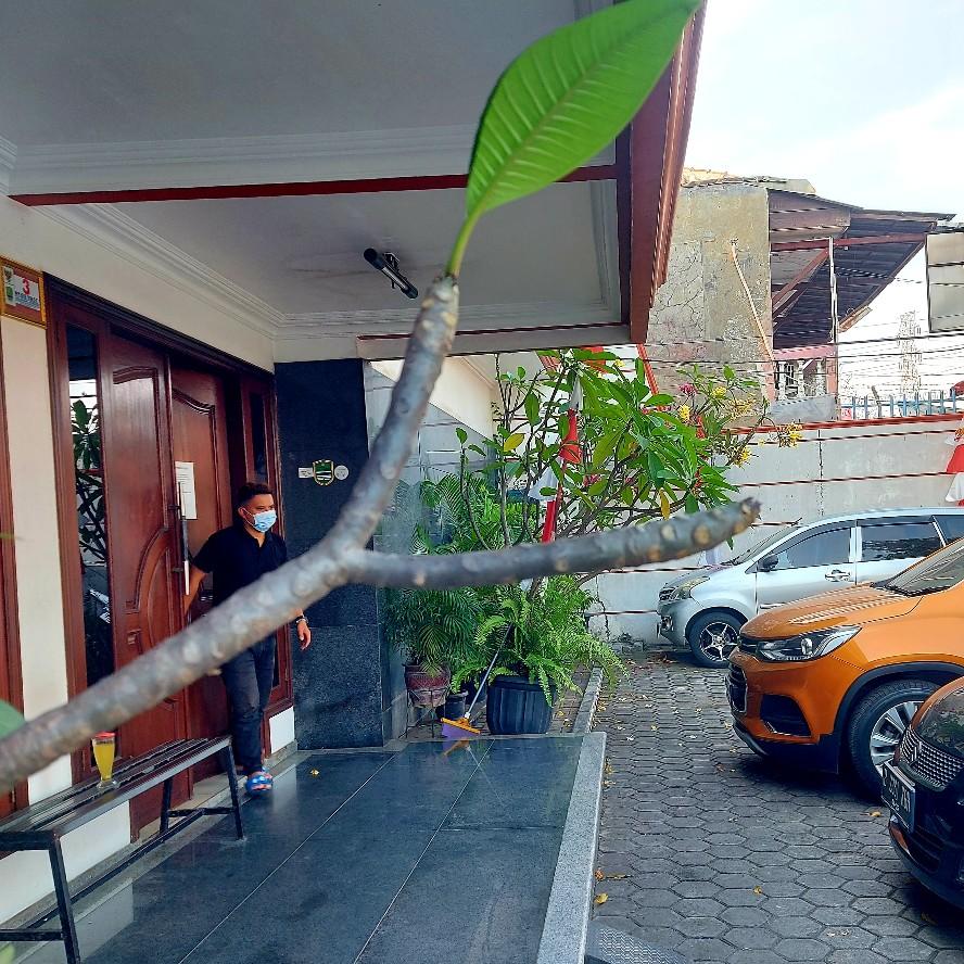Cabang pohon yang membahayakan orang di halaman salon Jalan Hankam Jatiwarna Bekasi